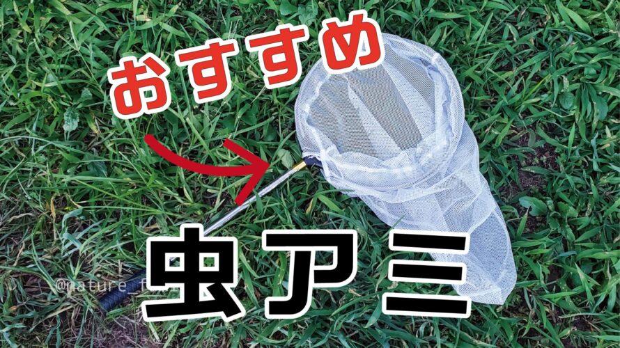 【昆虫採集】虫捕り網のおすすめはコレ!虫捕りグッズ&持ち物紹介